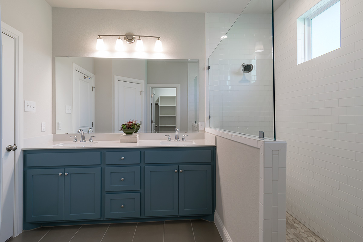 Bathroom Design (Custom Texas Homes): Master Bath